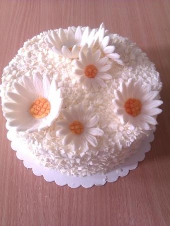 dort kopretiny Na přání