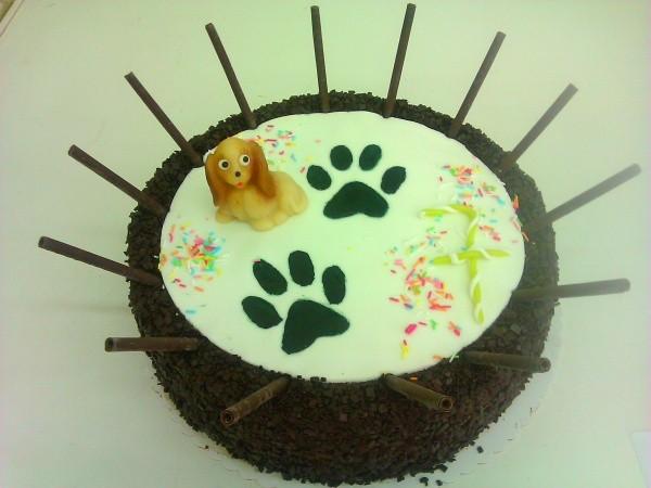 dort s pejskem Na přání