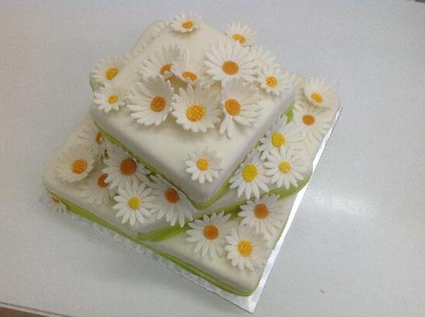 kopretinovy dort Na přání
