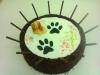 thumbs dort s pejskem Na přání