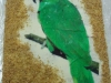 thumbs orechovy papousek Na přání